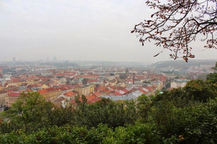 kinskeho_zahrada-08